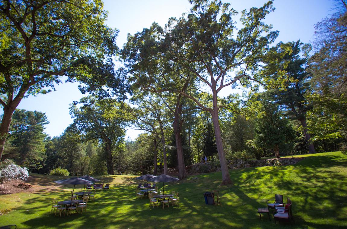 Beautiful backyard at Endicott House